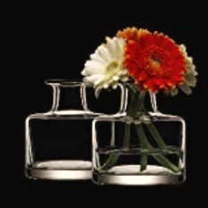 Clear Glass Bud Vases- The Glass Shop - Set Of Two